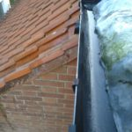 WDR Cleaned Gutters