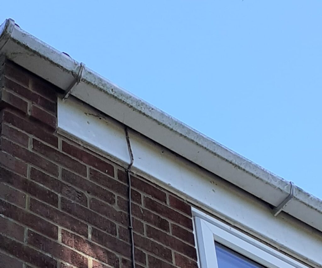 gutters before cleaning